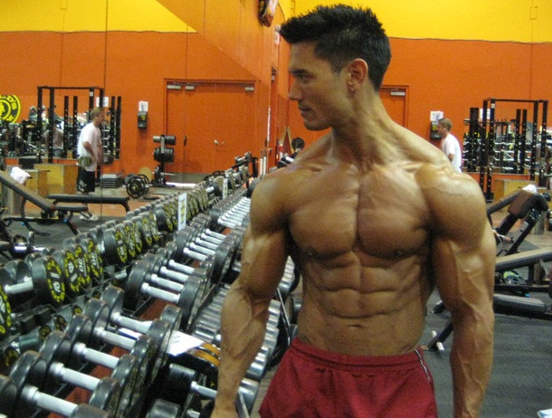 muscle shredded