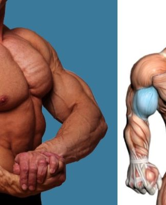 Add Size To Your Biceps with 21s