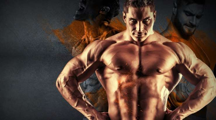 Testobal Review: Does It Really Build Muscle Faster?