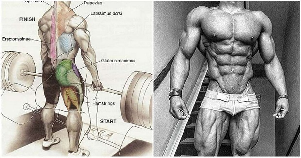 When & How To Progress At Weight Training – Workout Progression