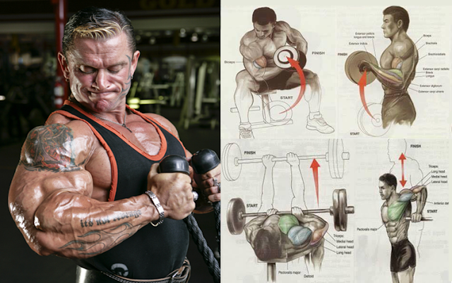 The Best Arms Pump Workout