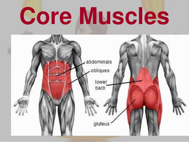 Best Core Strength Training Exercises For Beginners