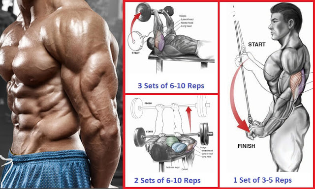 The most effective triceps workouts for mass-building