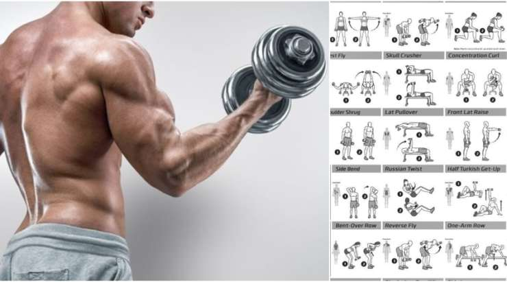Biceps Workout That Will Have You Bursting Through Your Sleeves