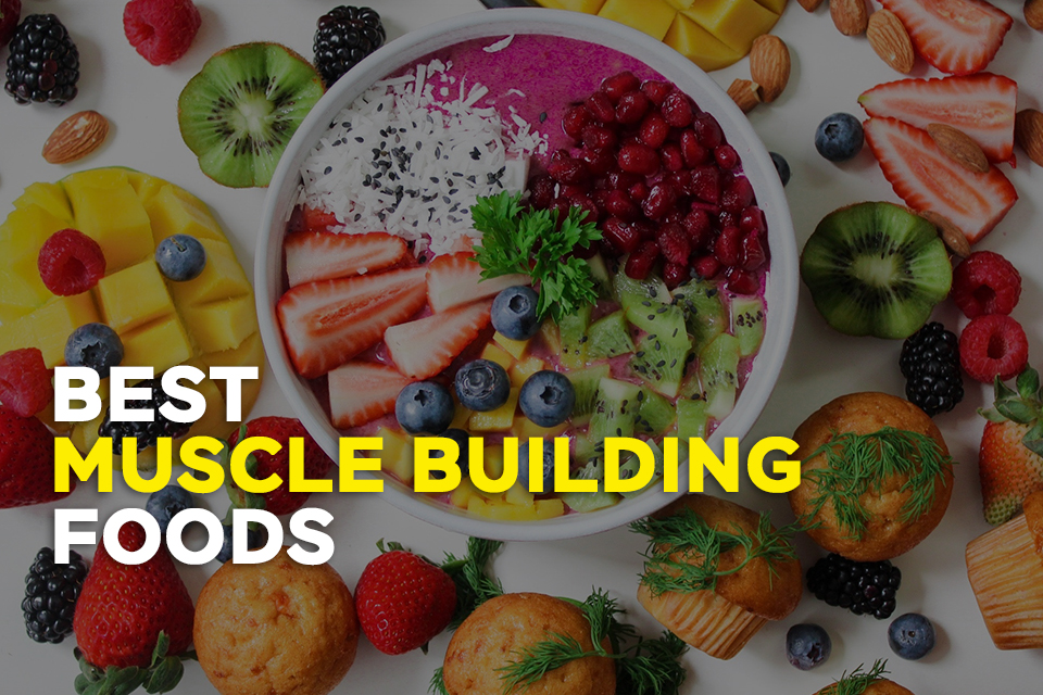 Top 15 Muscle Building Foods